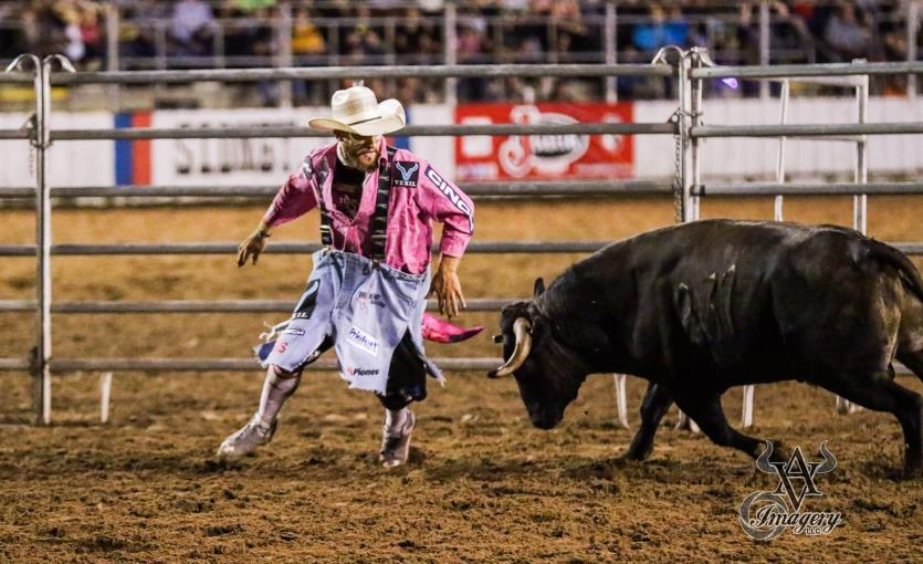 Chuck Swisher Bull Fighting