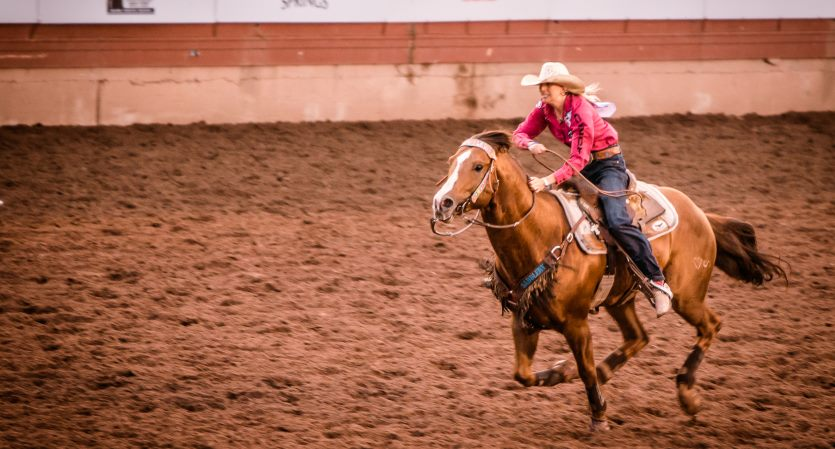 CINCH Womens Rodeo